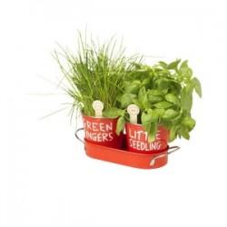 Faites pousser vos fines herbes de Jamie Oliver